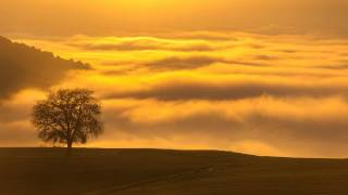 Golden Clouds, Music for Stress, Depression | Clearing Mind Problems
