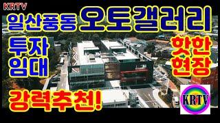 부동산투자 상가분양 일산 풍동 오토갤러리 자동차 매매상…