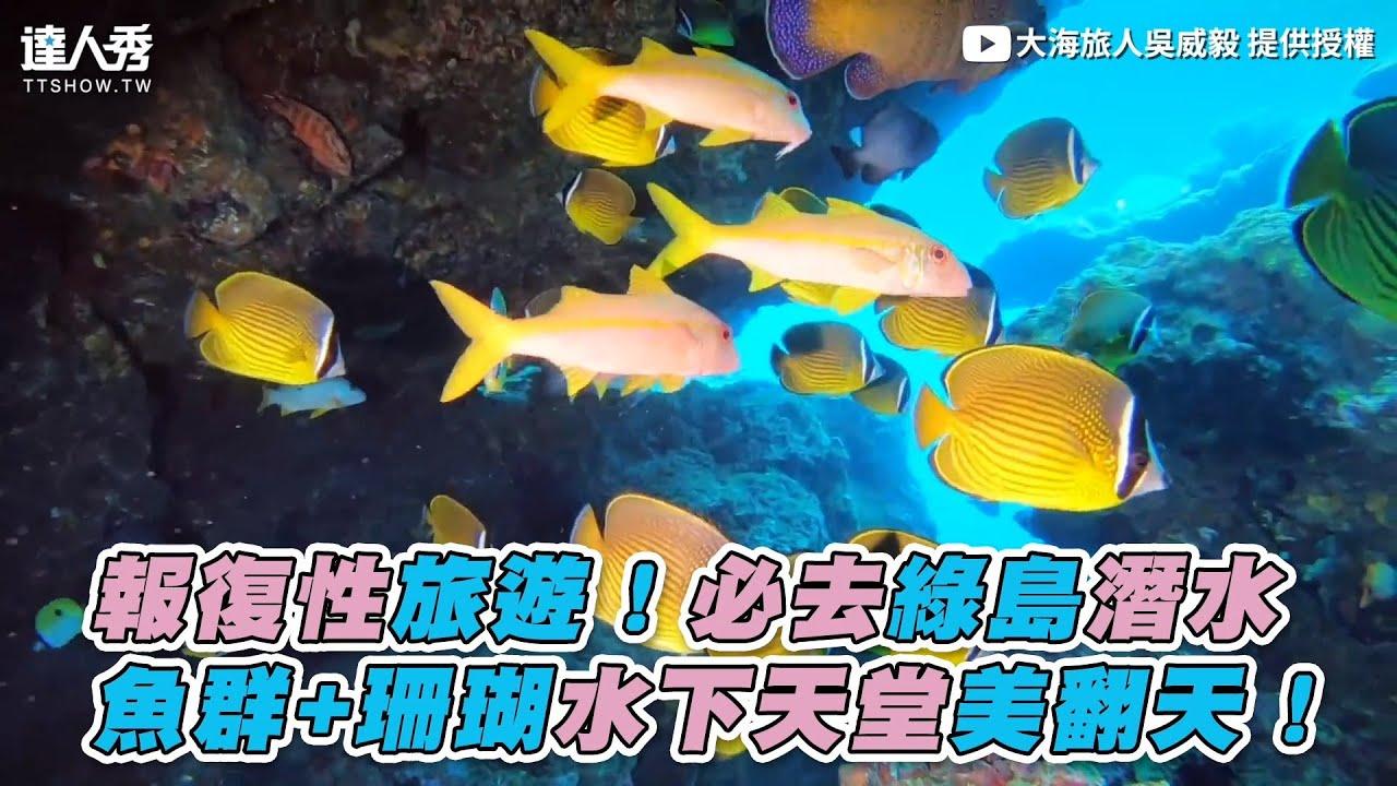 【報復性旅遊!必去綠島潛水 魚群+珊瑚水下天堂美翻天!】|大海旅人吳威毅