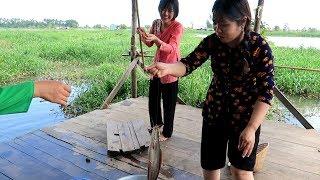 Huỳnh Như câu Cá Trê đủ bữa cơm chiều với món Cá Trê Kho Tiêu  | Thôn Nữ Miền Tây