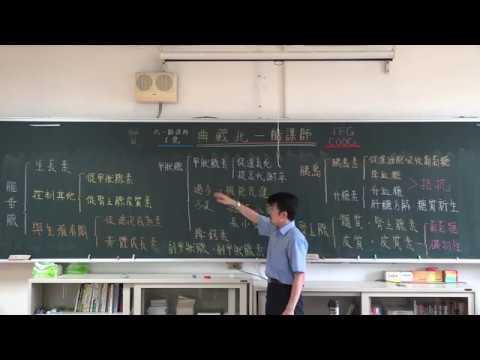 【潘彥宏老師】基礎生物(上) 28| 第三章動物的構造與功能  第五節 感應與協調