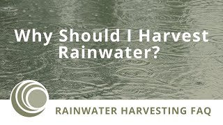 Why YOU Should Be Harvesting Rainwater!