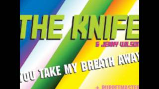 The Knife: You Take My Breath Away (Puppetmasters Remix)