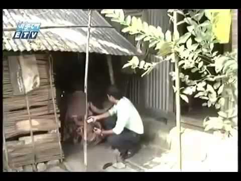 নিজের ছোট বোনকে দিয়ে দেহ বাবসা| Ekusher Chokh Bangla Crime Programe