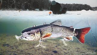 РОБОТЫ РАЗОГНАЛИ РЫБУ Подводная съемка Рыбалка на жерлицы