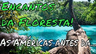 Vídeo Encantos da Floresta