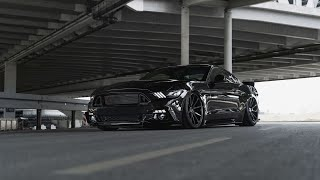 ALL BLACK STANCE MUSTANG GT 5.0 💥