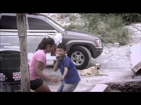 Trailer, Celso Piña. El rebelde del acordeón