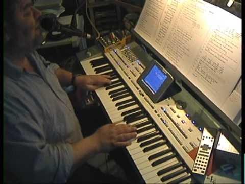 The GUY mitte Mundorgel -  Live on Korg PA2xPro