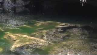 Документальный фильм: Багамские острова  Таинственные пещеры и затонувшие корабли