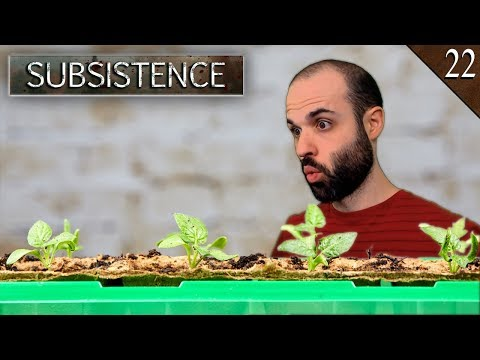 SUBSISTENCE #22 | PEQUEÑO HUERTO Y AL FIN HIERRO!! | Gameplay Español
