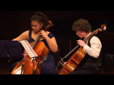 Virtuoso Strings - Sneyd Utting, Toroa Rising Piwakawaka Dancing