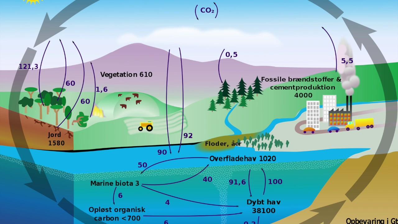 NG - Kulstofkredsløb og drivhuseffekt - YouTube