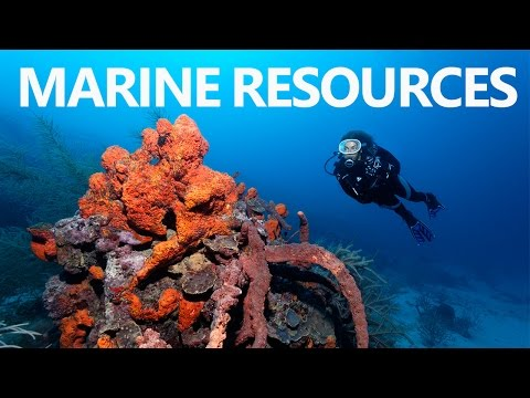 Geography for UPSC Civil Service Exam - Understanding Of Marine Resources