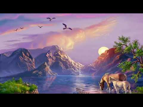Palak Roke Jameen Roke (short Clip Mix) Video