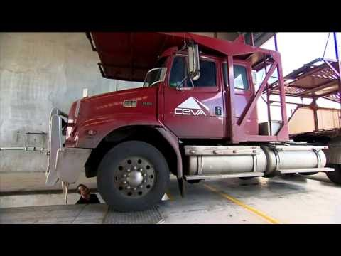 Big Wheels Truck Alignment