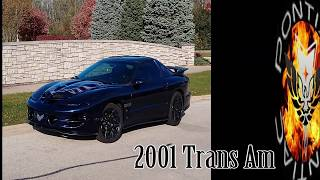 4th Gen Trans Am Camaro Texas Speed and Performance TSP Cat Back Exhaust  Stock LS1