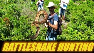 RATTLESNAKE HUNTING CAMP 2016  PENNSYLVANIA