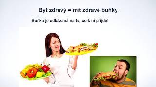Tomáš Kašpar - Zdraví začíná ve střevech