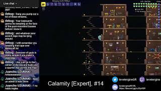 Terraria + Calamity [Expert Mode] (14)