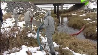 Разливы нефти Арктике не страшны(Конденсат попал не только на землю, но и оказался в воде. Скорость движения по реке - 9 сантиметров в минуту...., 2014-10-04T05:19:47.000Z)