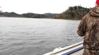 видео Курильский государственный природный заповедник