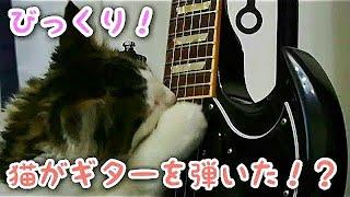 ジミヘンになりたいのか歯でギター弾いてます。ギブソンSGだけど。ギタ...