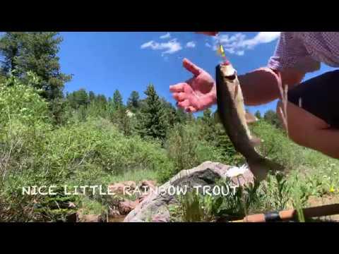 Trout Fishing Rainbow Gulch To Rampart Reservoir