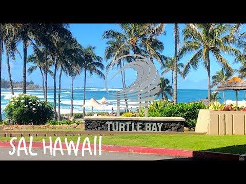 Hawaii 19: Flying Turtle