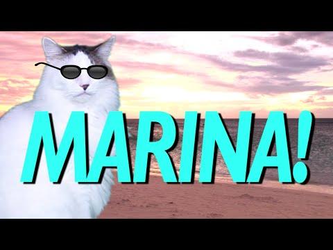 HAPPY BIRTHDAY MARINA! - EPIC CAT Happy Birthday Song