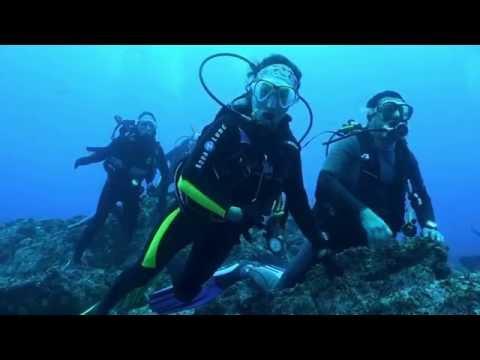 Cocos Island Okeanos Aggressor Nov-Dec 2016