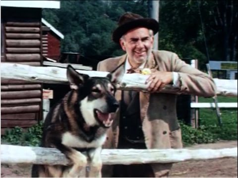 "Original The Littlest Hobo 1963 in Color! Rare ""Trouble In Pairs"" Episode"