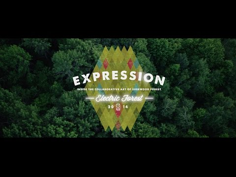 Electric Forest 2014 Part I: Expression