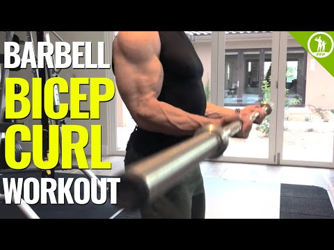 Barbell Bicep Curl Workout (GET BIGGER ARMS!)