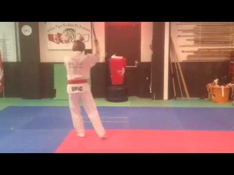 Free Form Taekwondo Sword Pattern