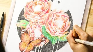 Pointillism timelapse - Insects and flowers