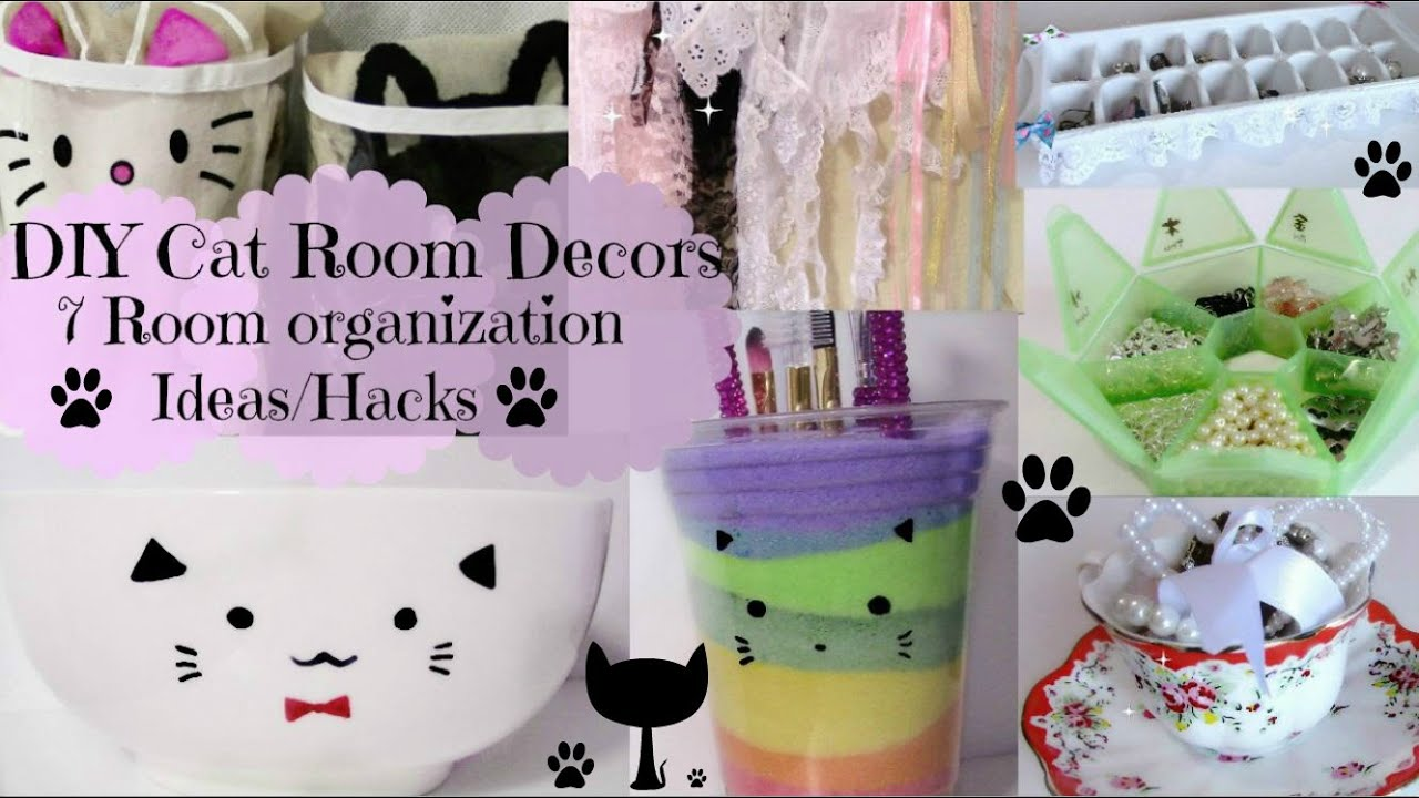 DIY Cat Room Decors And 7 Room Organization Ideas/Hacks   YouTube