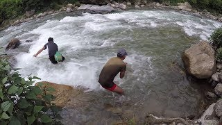 FISHING ASALA IN SMALL RIVER OF NEPAL | HIMALAYAN TROUT FISHING | CAST-NET FISHING |