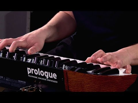 Korg Prologue - All Playing, No Talking!