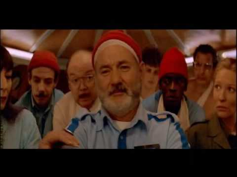 Neutral Milk Hotel - Aeroplane Over The Sea (Life Aquatic Music Video)