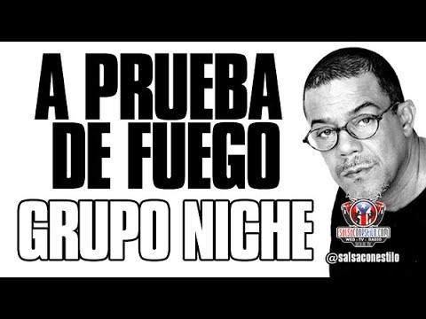 A Prueba de Fuego - Grupo Niche ((( 25 Años en Salsa al Parque 2008 ))) SalsaconEstilo.com by Gabo