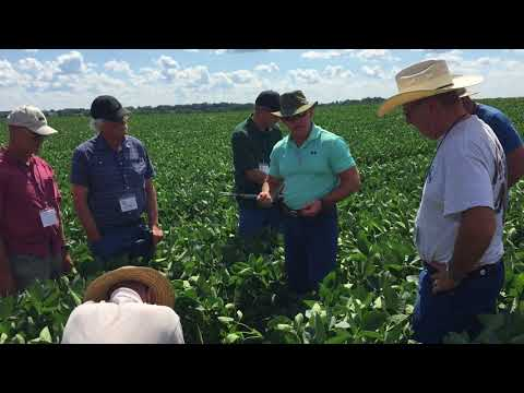 "SFA ""Dirt Rich"" with Dr. Allen Williams: Healthy soil and your senses"