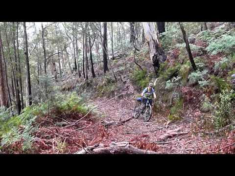 Tasmanian Trail MTB cycling tour