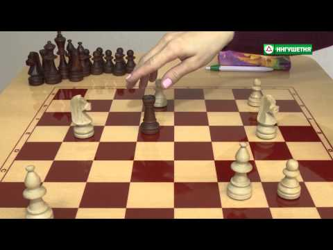 ШАХМАТЫ для начинающих Обучение шахматам YouTube