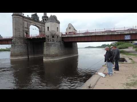 Погода в Калининграде -