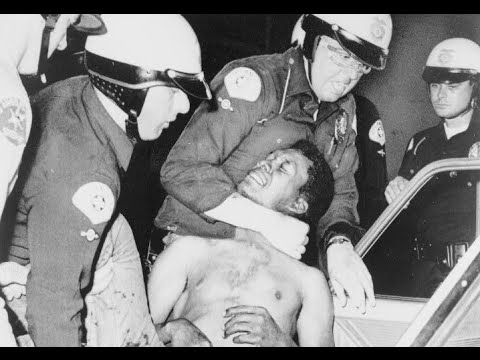 Police Brutality in America: Cases, Facts, Statistics, Articles, History, Lawyers (2000)