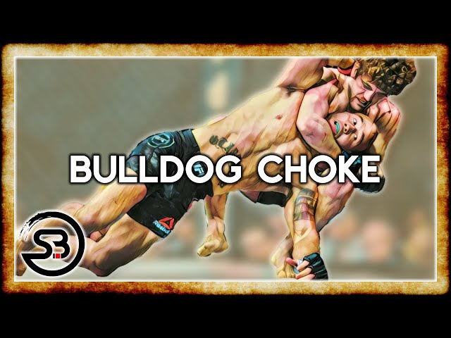 The Bulldog Choke in MMA - Analysis & Study