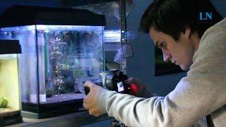 Garnelenzucht als Hobby – Lübecker Abiturient wird zum Aquaristik-Star!