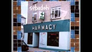 Sebadoh - Ocean