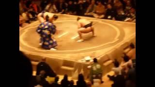 平成26年大相撲初場所大砂嵐vs栃乃若戦.